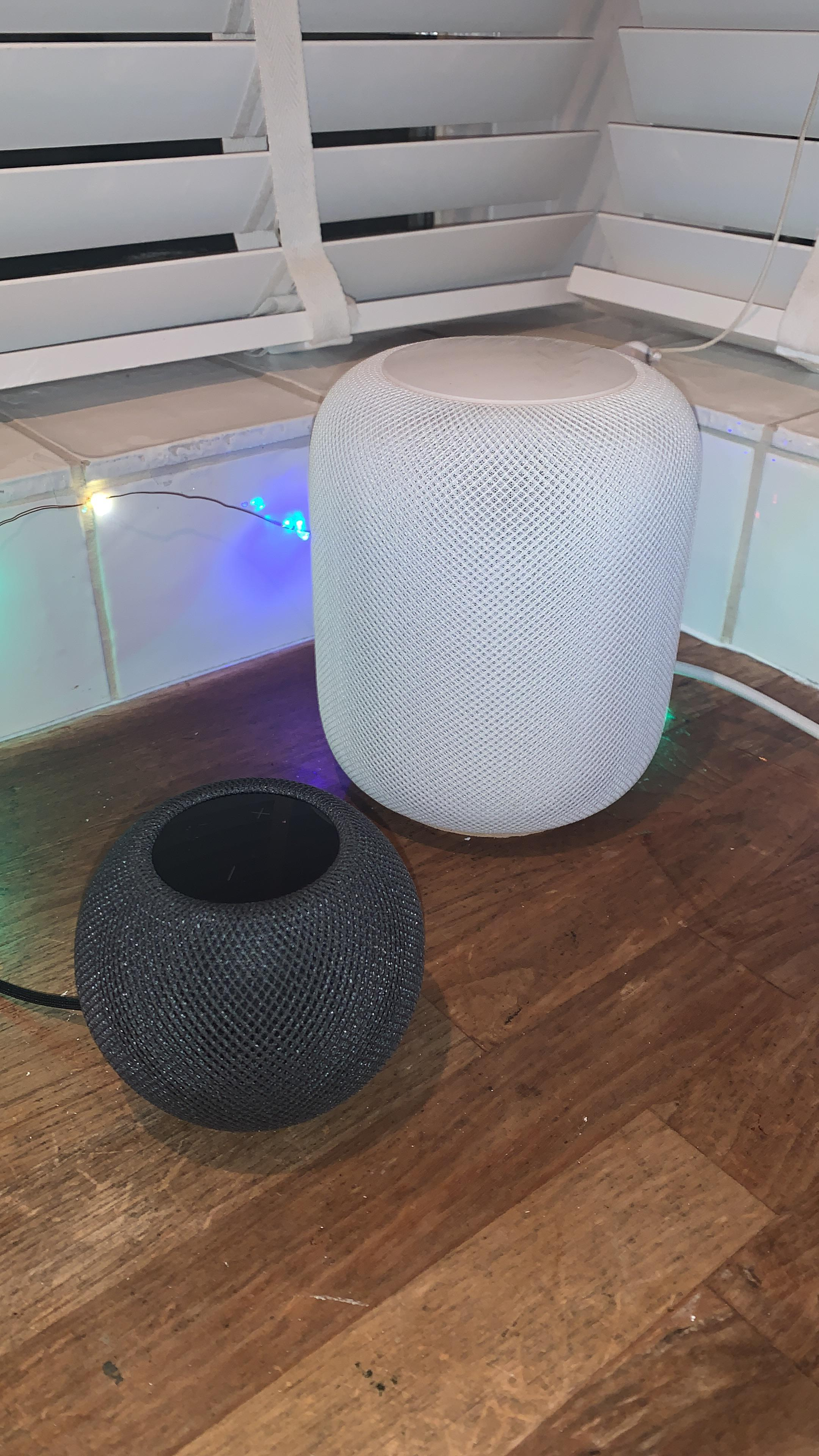 Great addition. The transport cost the same as the speaker