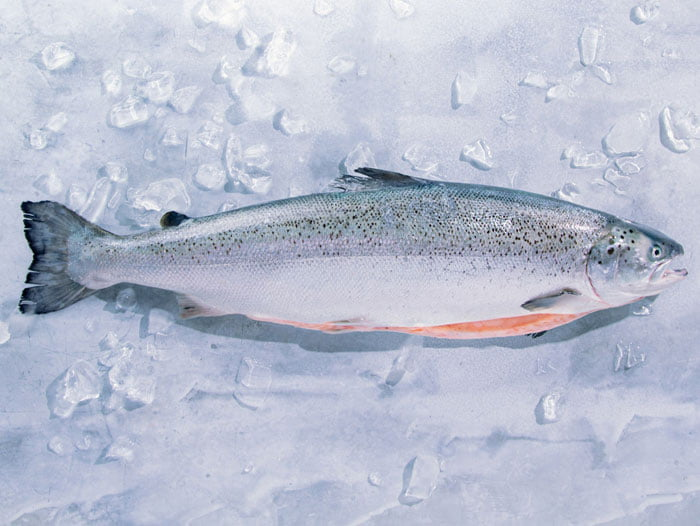 """Kvarøy Arctic Salmon is partnering with Andrew Zimmern for the home kit and virtual """"Homegate"""" for the Super Bowl,"""