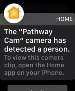 What happened to preview snapshots on the Apple Watch?  It used to work.  Even my Wyze cams give me a snapshot on my watch.